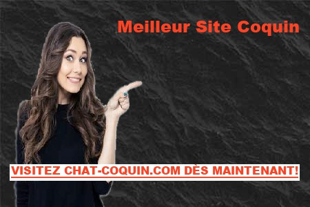 Stats Sur Chat-Coquin France
